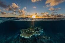 Sundown Sky Over Coral Reef