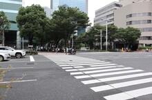 横断歩道(東京、新宿)