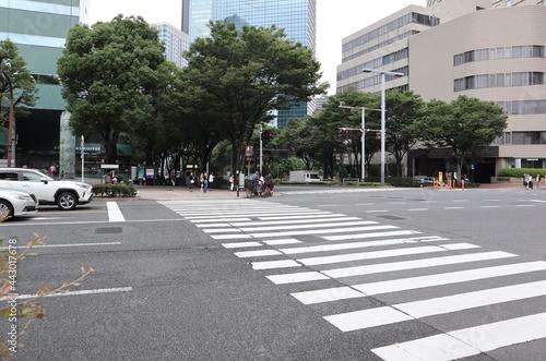 横断歩道(東京、新宿) Fotobehang