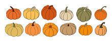 Big Set Of Various Hand Drawn Pumpkin Squash In Warm Natural Fall Colors Isolated On White. Vector Illustration - Autumn Themes, Halloween, Thanksgiving Design Elements. Rustic Cottagecore Collection