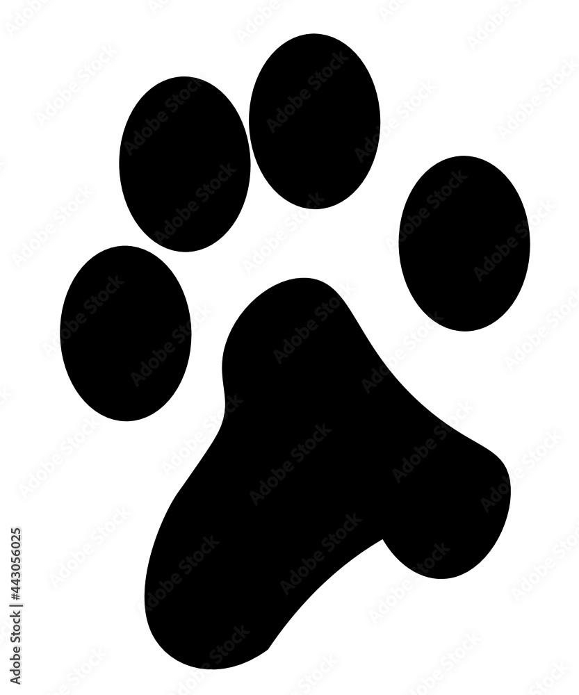 Obraz łapka psa fototapeta, plakat