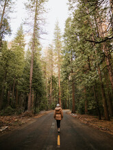 Lonely Woman Walking Along Empty Highway Against Huge Green Sequoias