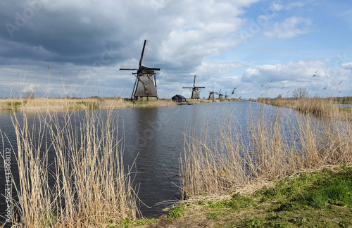 Fotografie, Obraz Typically Dutch polder landscape with windmills and cloudy skies