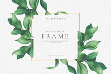Beautiful Floral Frame With Elegant Leaves Vector Design Illustration