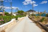 Fototapeta Kwiaty - Road to the beautiful sandy Logaras beach on Paros island