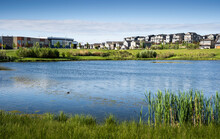 A Storm Retention Pond Creates Natural Habitat In A New Urban Community In Airdrie Alberta Canada.