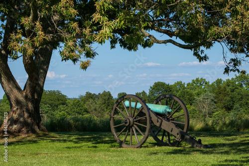 Confederate cannon beneath a tree near the Manassas (Bull Run) Civil War battlefield site in Virginia, USA Fotobehang