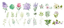 Set-collection-green-leaves-and-flower-watercolor-style