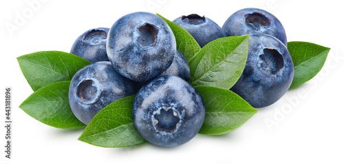 Organic blueberry isolated on white background Fototapet