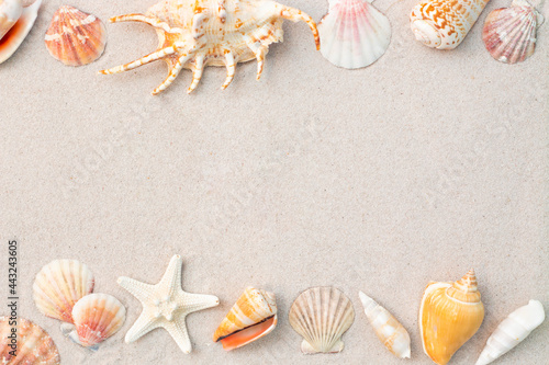 Tela Tropical starfish and sea shells on sand, space for text