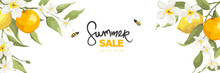 Banner With Jasmine Flowers, Citrus Branch And Bees. Background, Vector Illustration For Summer Sale.