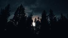 Moon Peeking Through Pine Trees With Cloudy Starry Night