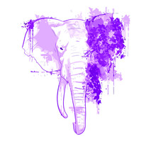 Elephant Pachyderm Animal Trunk Ivory Africa Wo Design Vector Illustration For Use In Design And Print Poster Canvas