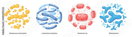Photo Set of Probiotic Bacteria, Good Microbes for Gut Health and Microbial Flora