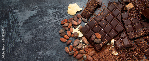 Fotografía Cacao beans and chocolate on gray background.
