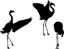 Three Flamingo Fine Black Silhouettes
