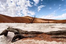 Deadvlei In Sossusvlei Desert.