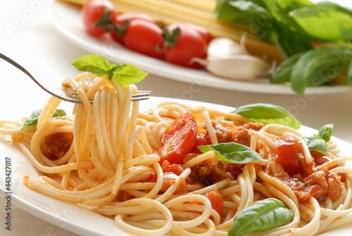 Obraz na plátně spaghetti with tomato sauce and basil