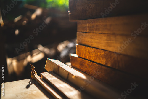 wood material industrial background, carpenter machine equipment for wooden cons Fototapet