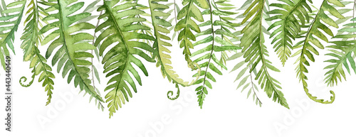 Canvastavla Long seamless banner with fern tropical leaves. Watercolor botany