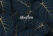 Tropical Elegant Monstera Leaves. Luxury Nature Leaf Texture Design With Golden Line Arts On Dark Blue Background. Hand Drawn Leaf Outline Element. Luxury Simple Monstera Leaf Vector Concept.