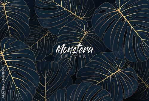 Leinwand Poster Tropical elegant monstera leaves