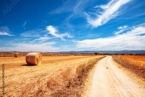Italia, paesaggio rurale con balla di fieno e sentiero
