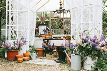 White Retro Terrace In The Summer Garden Decorated With Vintage Details And Bouquets Of Wildflowers Lilac Lupines With Retro Pots