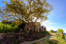Old Ruined Stone Made Farmhouse On A Rural Countryside Landscape