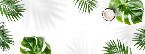Fotografija Tropical leaves, Monstera plants and coconut isolated on white background
