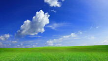 Green Meadows With Blue Sky