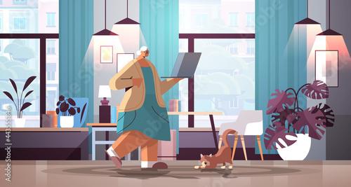 Fotografie, Obraz senior woman using laptop grandmother relaxing at home social media network conc