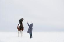 Girl Training Horse In Snow