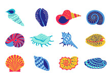 Sea Shells. Cartoon Tropical Underwater Clam And Marine Animal Collection, Ocean Seafood And Aquarium Decoration. Vector Isolated Set