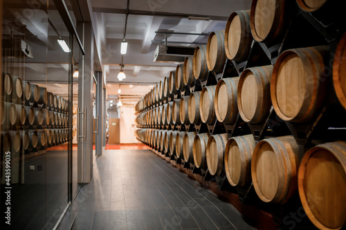 Foto Old aged traditional wooden barrels with wine in a vault lined up in cool and da