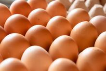 Fresh Eggs In A Carton Box From Agriculture Farm.