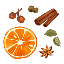 Drawing Of Popular Bakery Spices Isolated On White Background. Vanilla Flower, Cinnamon Stick, Ginger Clove And Aniseed Confectionery Spices, Orange And Berries.