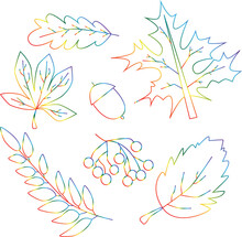Set Of Conturs Of Lgbt Autumn Leaves