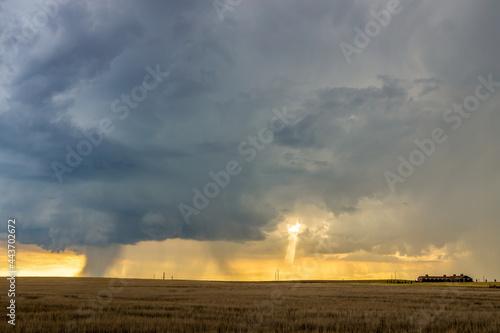 Obraz na plátně Dark storm clouds over the horizon with heavy rain on a windswept prairie, sunlight, and a farmhouse in the distance