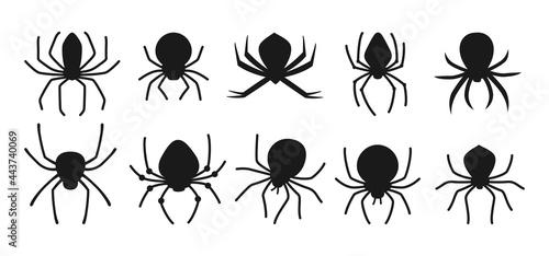 Fotografiet Spider Halloween black silhouette set