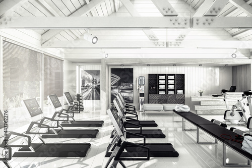 Canvas Treadmills Inside a Fitness Center- black and white 3D Visualization