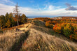 Leinwandbild Motiv Colorful autumn morning in the Carpathian mountains. Slovakia, Europe.