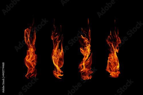 Obraz na plátně Fire flames collection isolated on black background