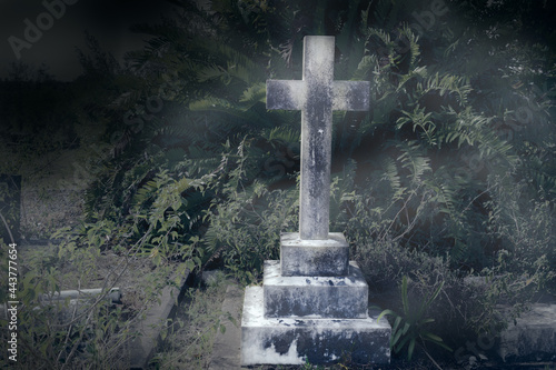 Fototapeta Tombstone in rundown graveyard with tropical plants and vines - cross grave ston