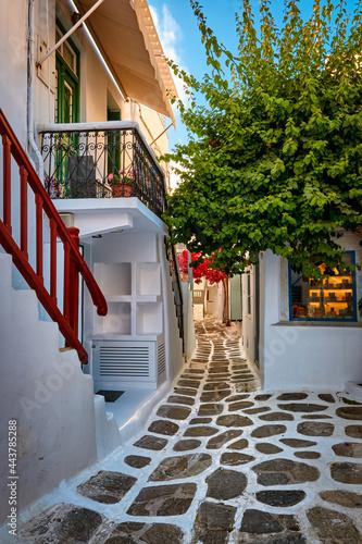 Fotografiet Beautiful traditional narrow cobbled streets of Greek island towns