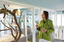 Woman Watching Monkey In Zoo