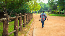Pinnawala, Sri Lanka - 01 23 2020: A Lonely Man Walking In A Park View From Back.