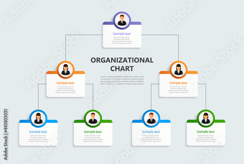Corporate organizational chart with business avatar icons. Business hierarchy infographic elements. Vector illustration