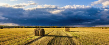 A Field Of A Haystacks On An Autumn Day, Illuminated By Sunlight, With Rain Clouds In The Sky.