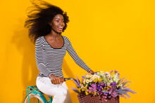 Photo Portrait Of Curly Woman Riding A Bike With Flower Pot Smiling Enjoying Fresh Wind Isolated Bright Yellow Color Background